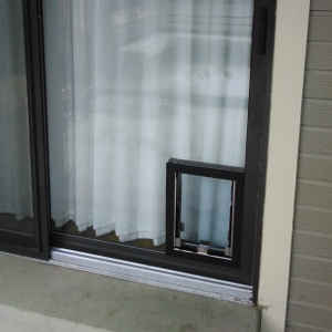 All types of glass doors : fast door installation - pezcame.com